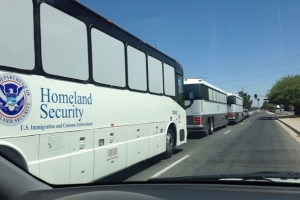 DHS buses lined up to transport illegal immigrants.